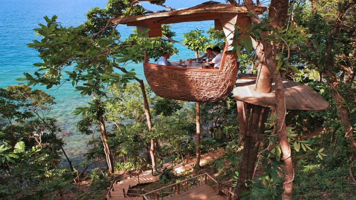 TAKE YOUR MEAL TO NEW HEIGHTS — TREEPOD DINING