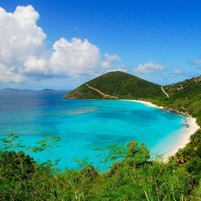 Feel the Warmth of the BVI This Winter