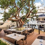 Eat Local, Be Coastal: Guide to Dining during the Fort Lauderdale International Boat Show