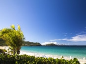 Imported Image - Fall in love with the Leeward Islands