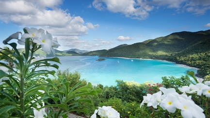 US Virgin Island luxury yacht in Cinnamon Bay St John and luxury beach villas