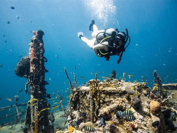 scuba diving in Caribbean around tropical fix and yacht charter in St Kitts